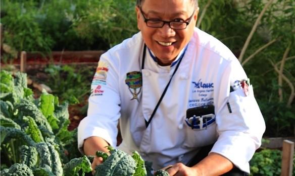 chef gio in garden