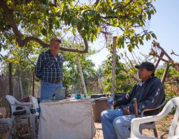 North Gaffey urbran farmer Antonio and his friend .